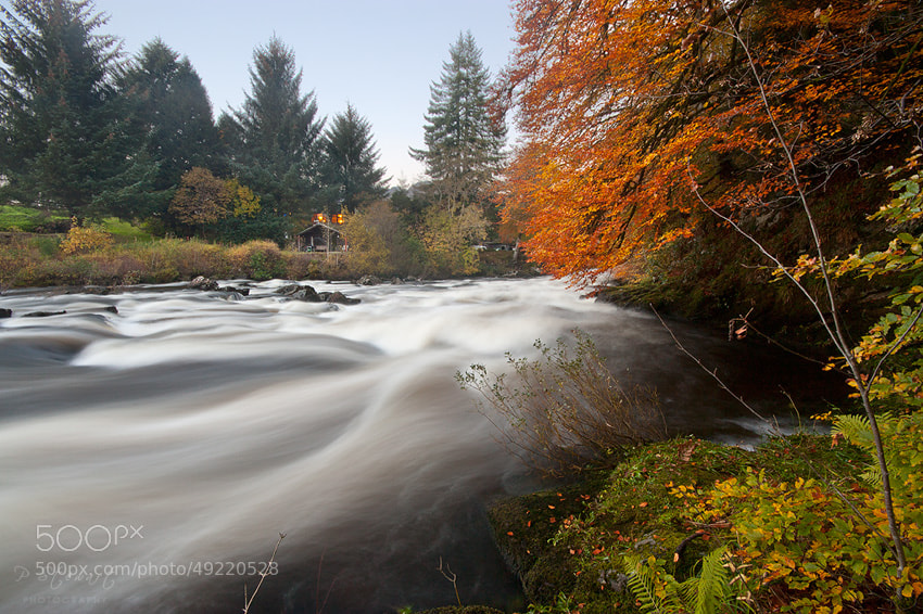Photograph Autumn Rush by Philip Stewart on 500px