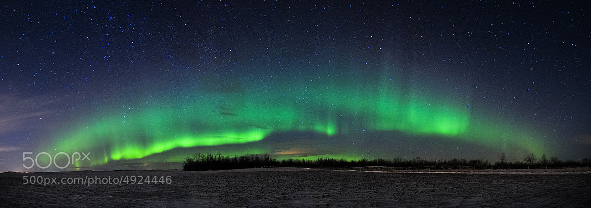 Photograph January 23-24 Aurora by Mike Isaak on 500px