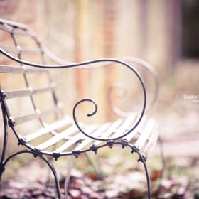 Winter Bench by Sasha L'Estrange-Bell on 500px.com