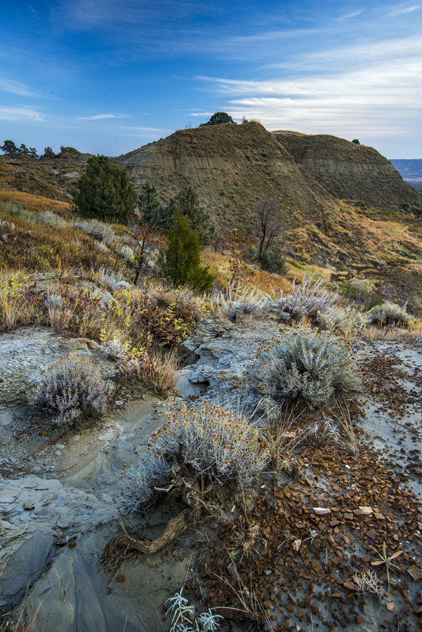 Photograph The Mud Canyon by Marshall Lipp on 500px
