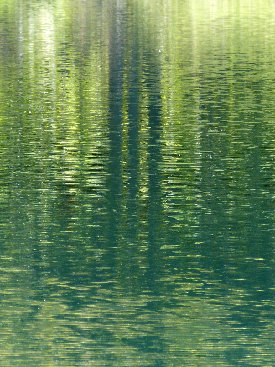 Photograph green reflection by Florence Guichard on 500px