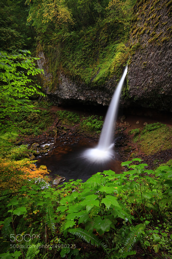 Photograph Ponytail Falls I by Tula Top on 500px