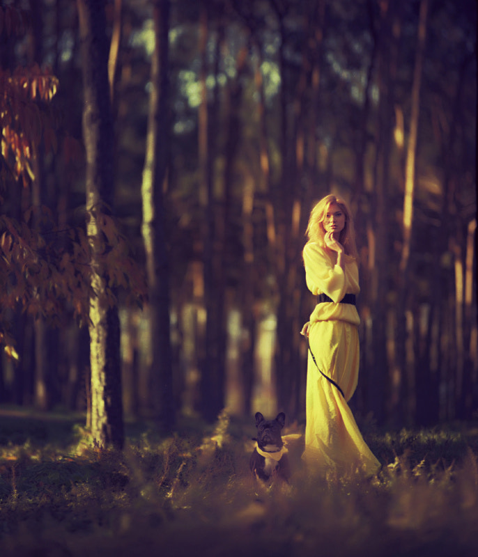 Photograph gold by oprisco  on 500px