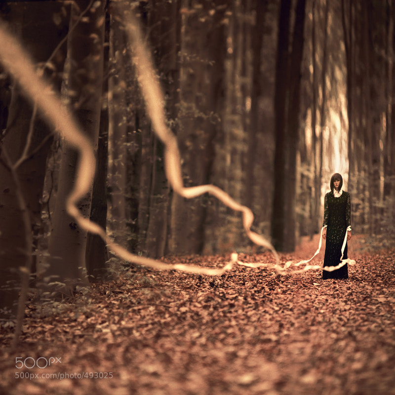Photograph ...i lead by oprisco  on 500px