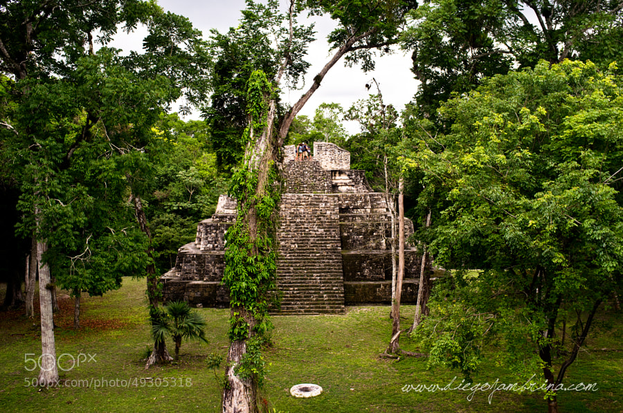Templo maya en Yaxhá by Diego Jambrina on 500px.com