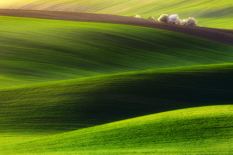 Photograph Green land  by Piotr Krol on 500px