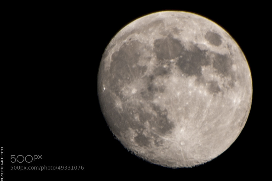 Two Days For October Moon