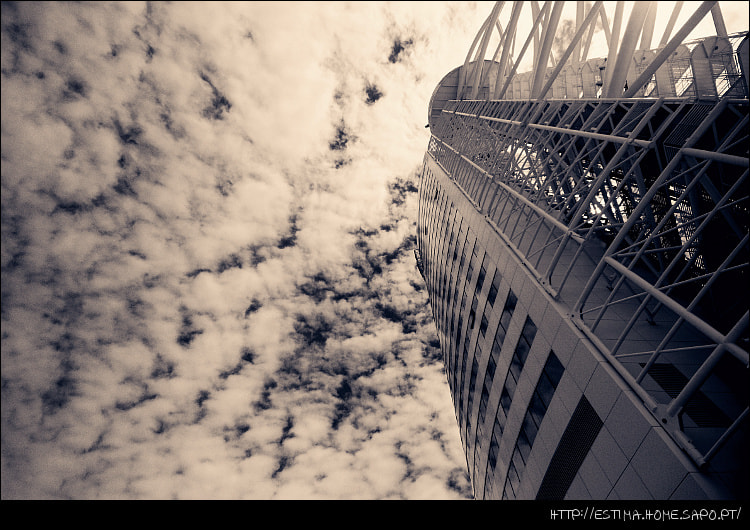 Photograph Looking up by Tiago Estima on 500px