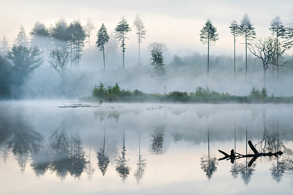 Photograph Morning at the lake by Leiph B on 500px