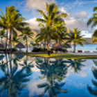 ������, ������: Palm trees reflecting in pool Four Seasons Bora Bora