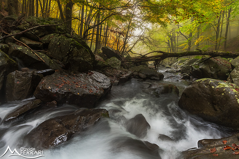 Photograph Incoming Fall by Davide Ferrari on 500px