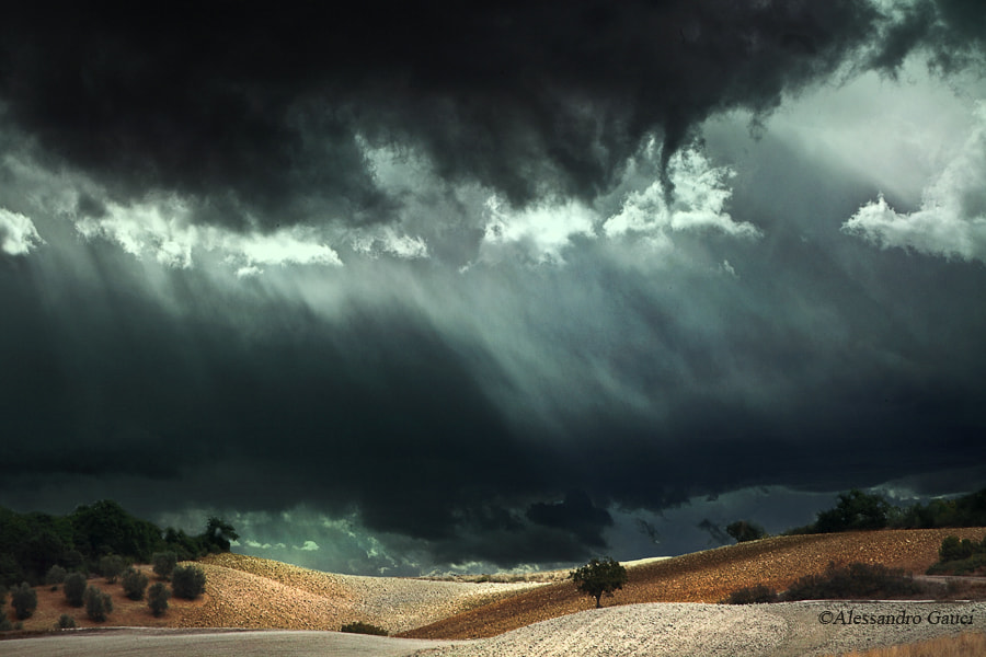 Photograph Landscape in Val d'Orcia by Alessandro  Gauci on 500px