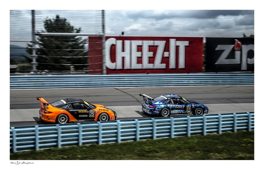 Grand Am IMSA Porsche GT3 Cup
