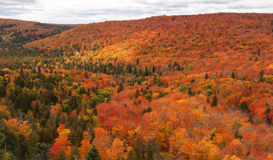 "Autumn comes to the north country.  Please press ""H"" and ""M"" for best viewing!"