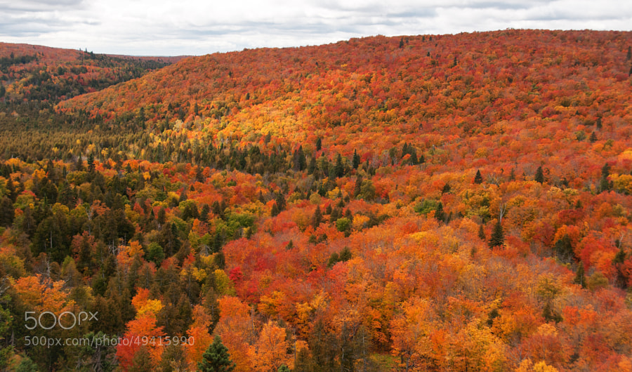 """Autumn comes to the north country.  Please press """"H"""" and """"M"""" for best viewing!"""
