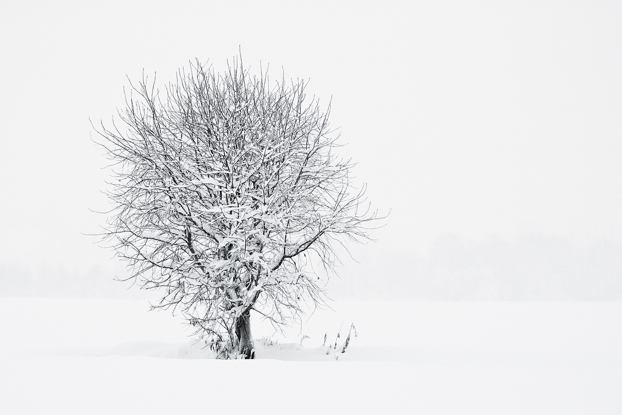 Photograph Winter is coming by Kolbein Svensson on 500px