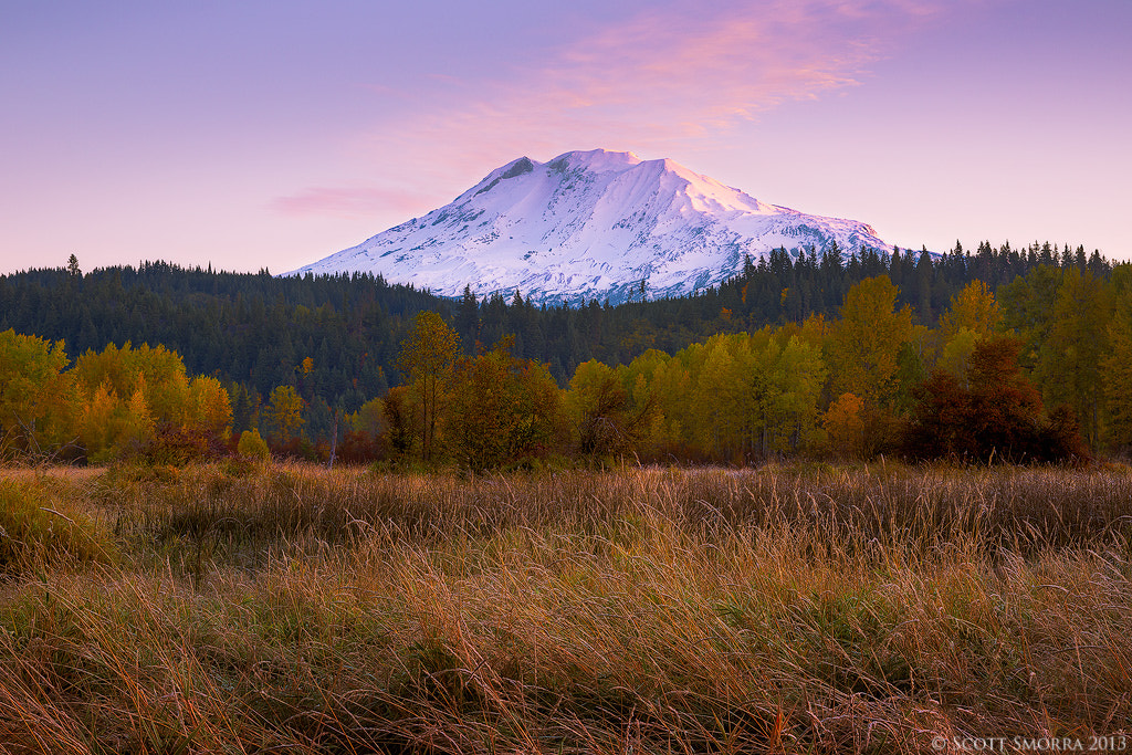 Photograph Autumn Light by Scott  Smorra on 500px