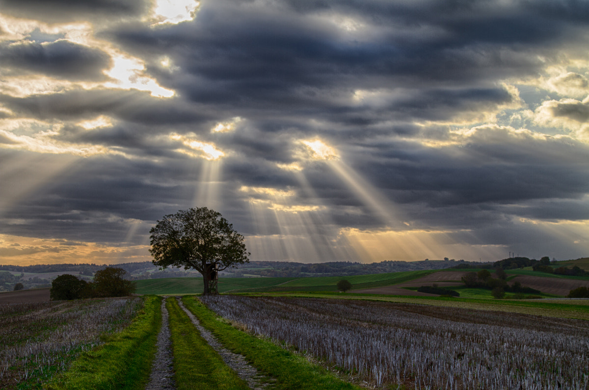 Photograph Rays of Light by Philipp K on 500px