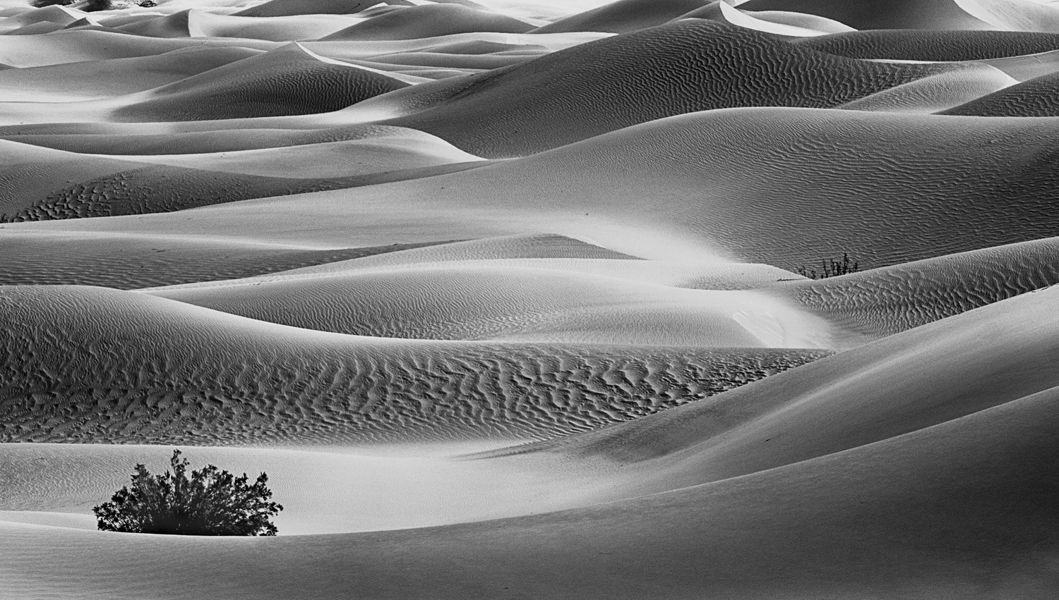 Photograph Sand Swept by Dustin Penman on 500px