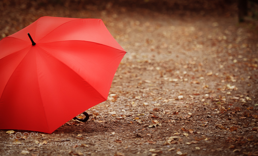 Photograph red.. by Kristina Napolskih on 500px
