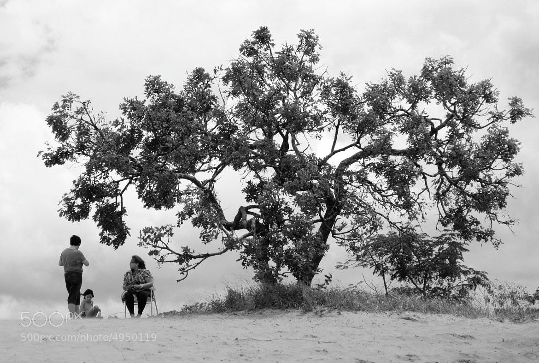 Photograph desert  by Emerson Ricardo Ricardo on 500px