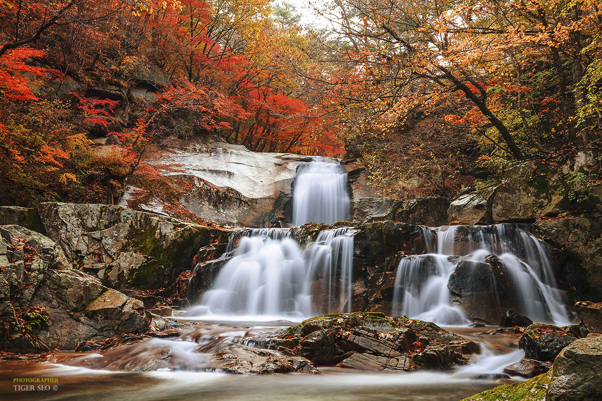 Photograph waterfall in Autumn by Tiger Seo on 500px