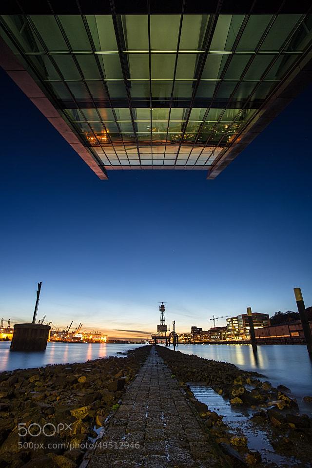 Photograph The Path by Sebastian  Warneke  on 500px