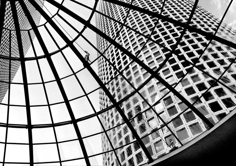 "Photograph ""Down the Spider Web"" by Osher Partovi on 500px"