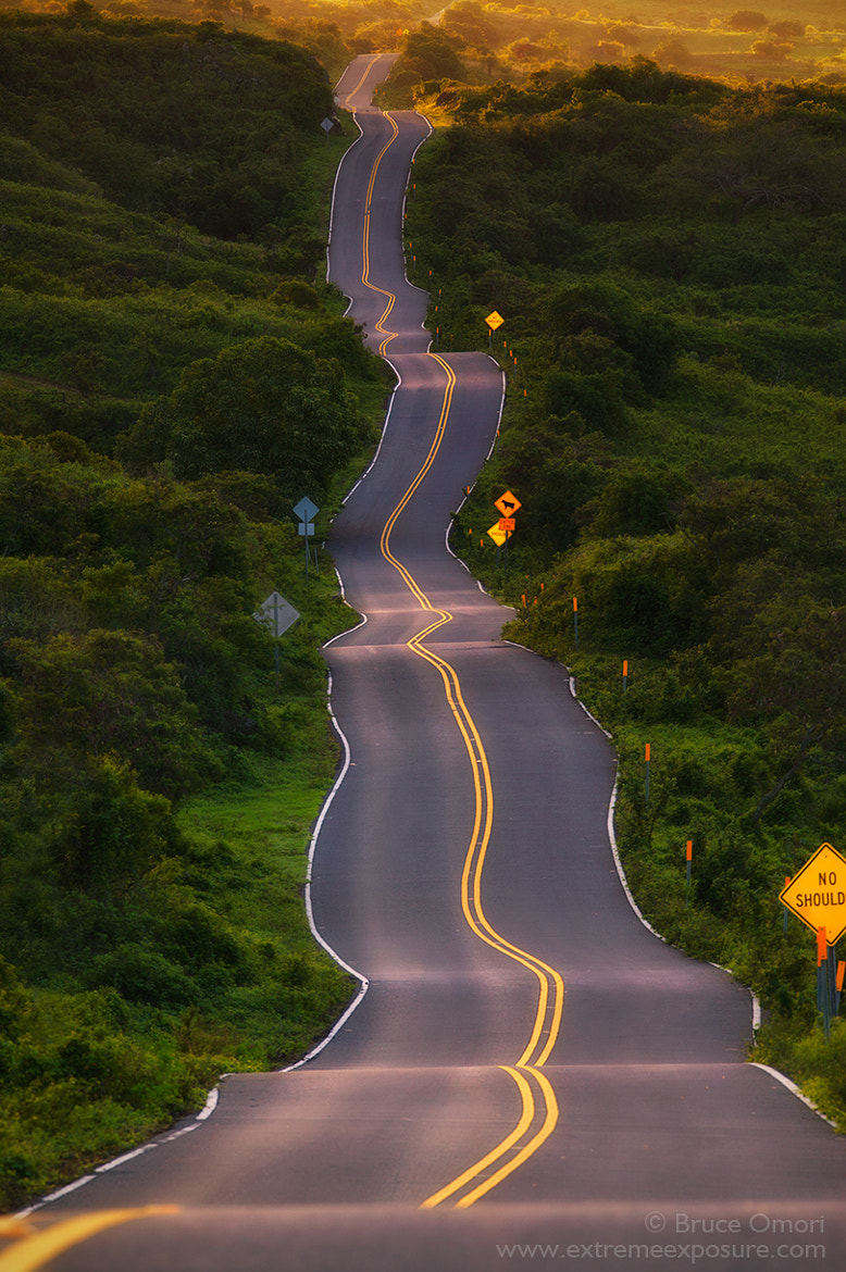 Photograph My Life by Bruce Omori on 500px