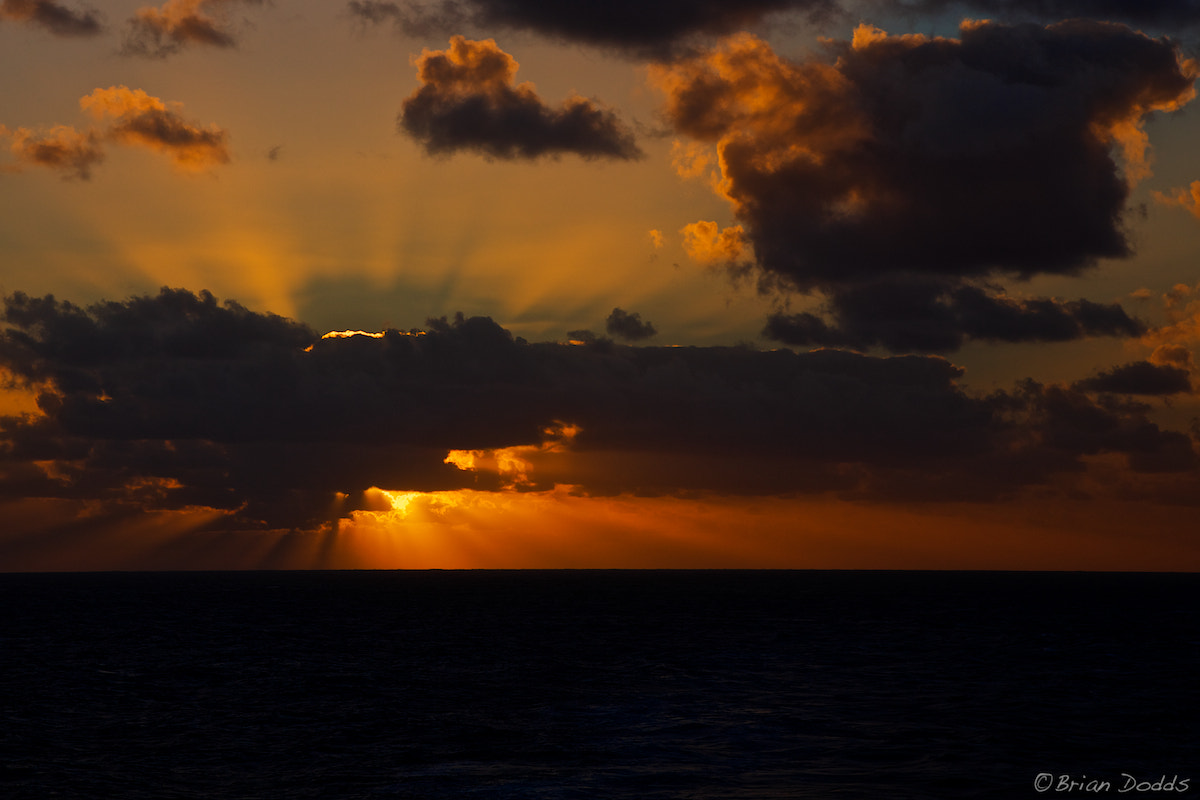Photograph Sunrise at Sea by Brian Dodds on 500px