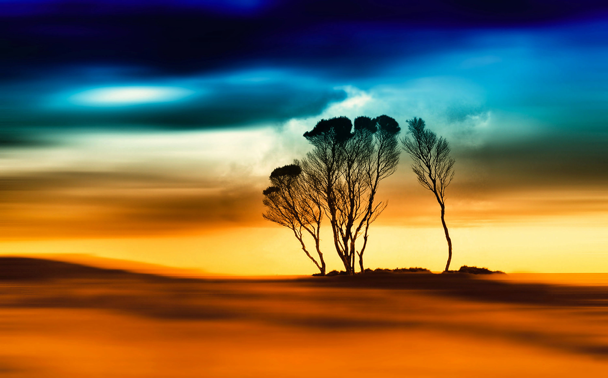 Photograph The Gardens Dream by Margaret Morgan on 500px