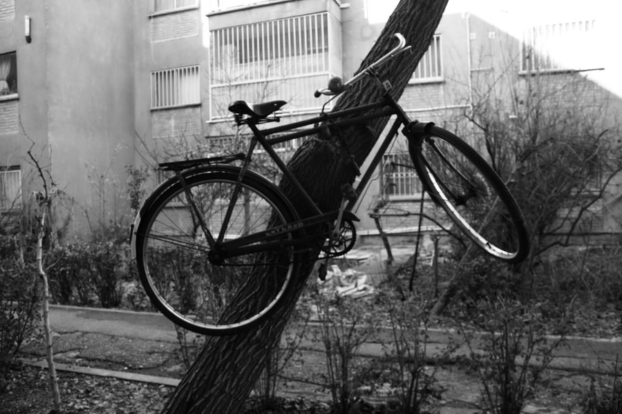 Photograph Bicycle by Mahdi Nosrati on 500px