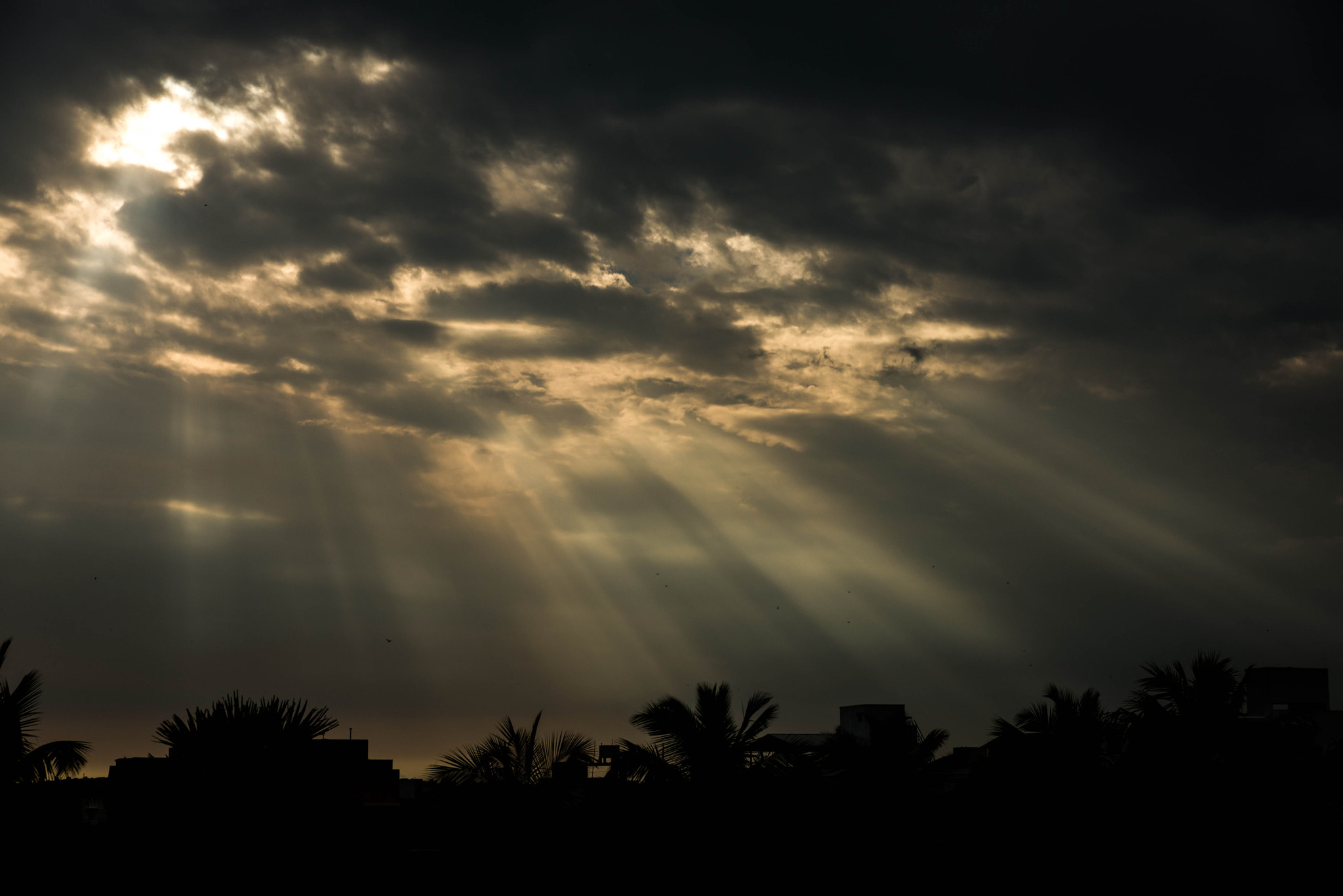 Photograph Rays by Deepak Dhamuria on 500px