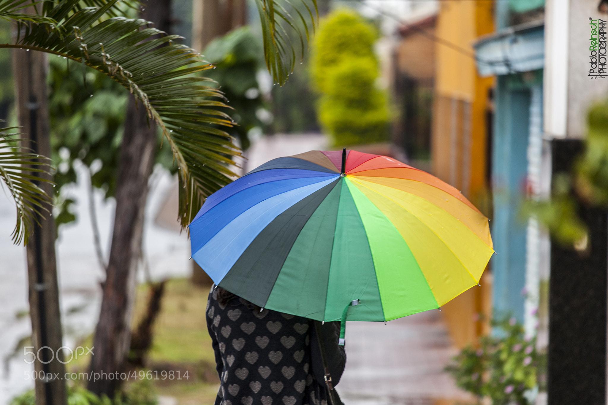 Photograph Dando color al día... by Pablo Reinsch on 500px