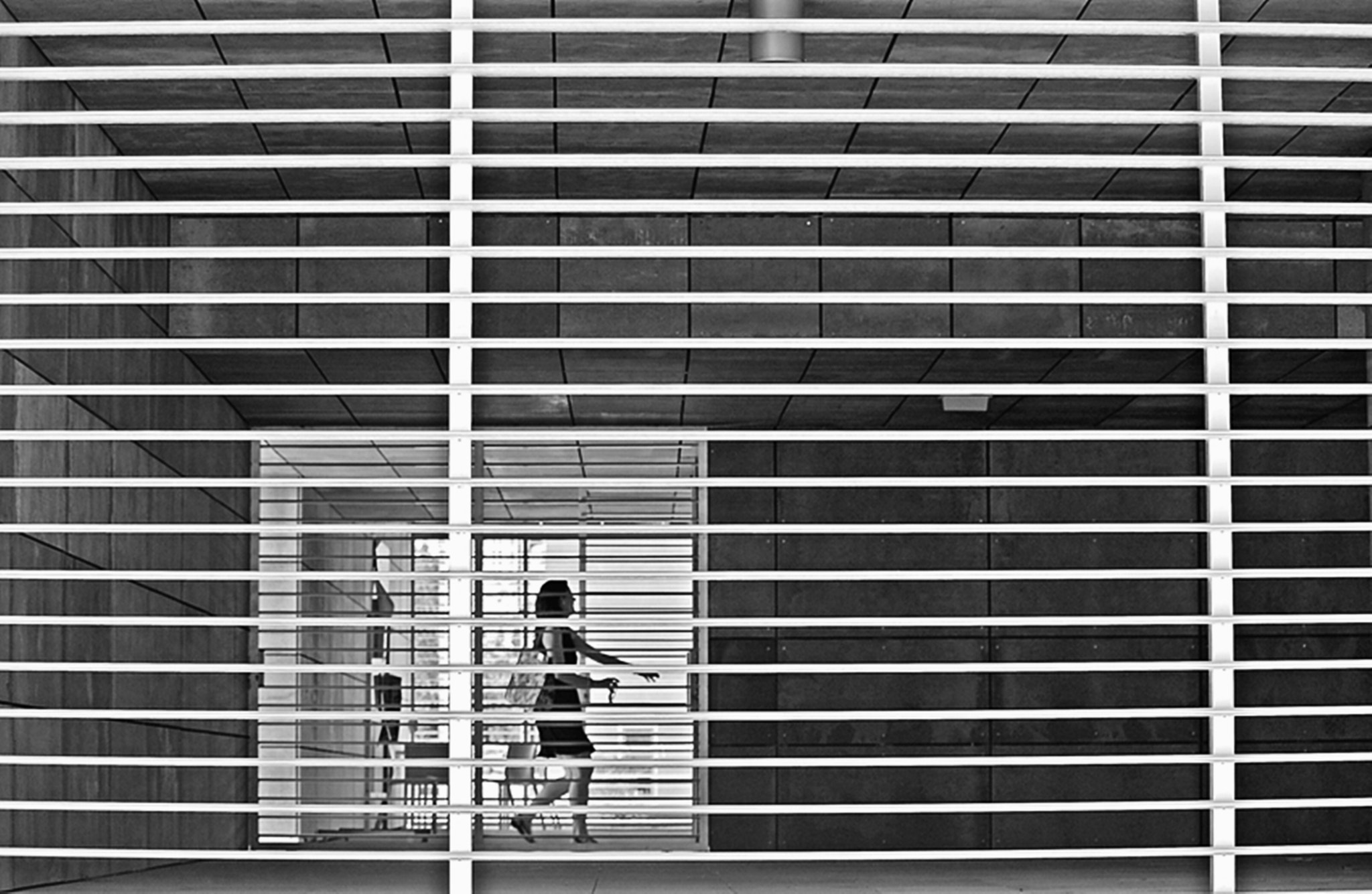 Photograph The intricate lines of life. by Miguel Silva on 500px