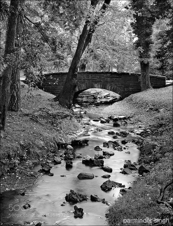 Photograph bridge by parminder singh on 500px