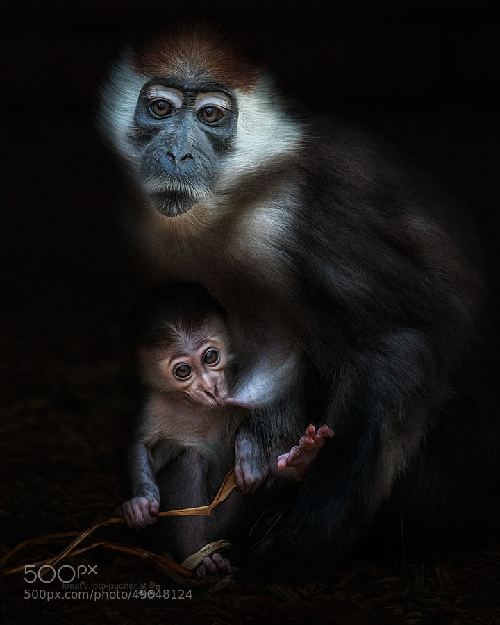 Photograph mother's love by Michaela Pucher on 500px