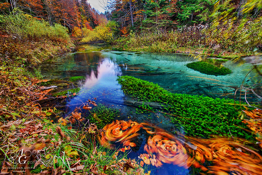 At dusk Black River flows quietly through Plitvice rainforest