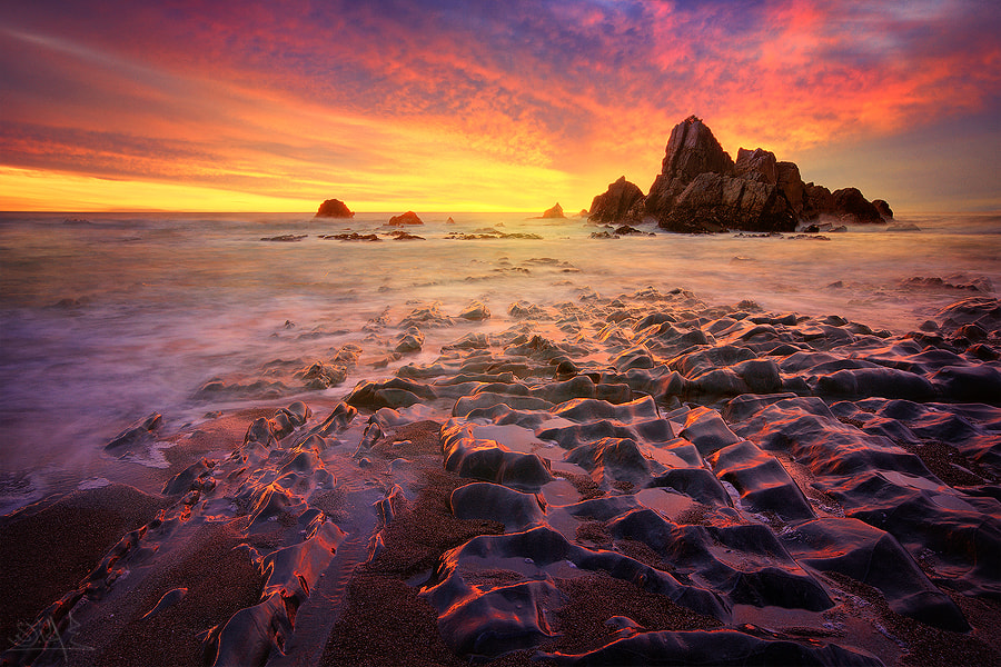 Photograph Explosion of Colors by Mohamed Al Jaberi on 500px
