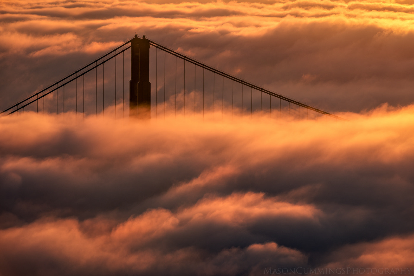 Photograph Knocking on the Golden Door by Mason Cummings on 500px