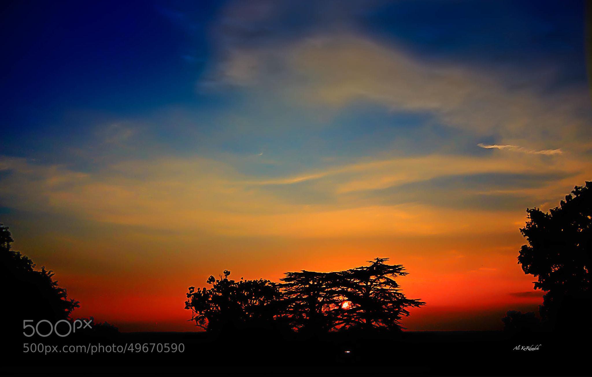 Photograph Akona Matata:) by Ali KoRdZaDeh on 500px