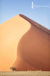 Sand dune by Heather Balmain on 500px