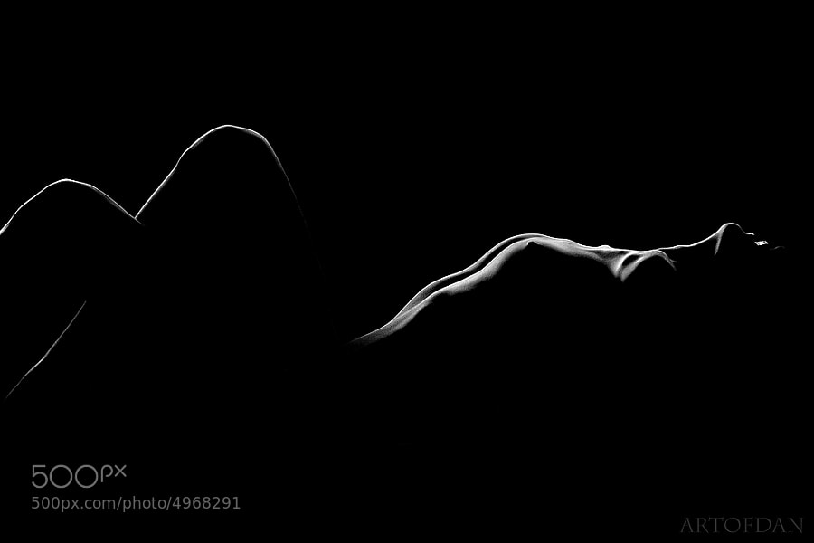 silhouette photo - bodylines by Dani Fehr