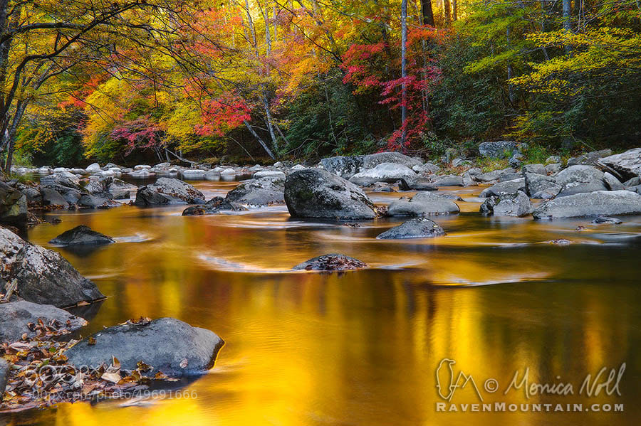Photograph River of Gold by Raven Mountain Images on 500px