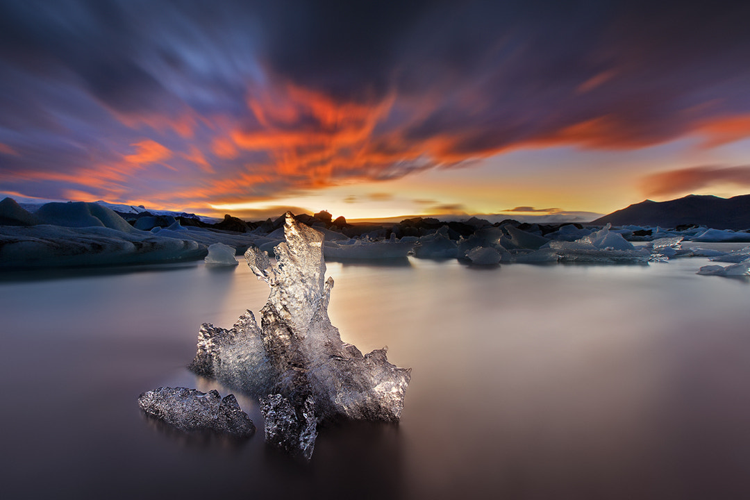 Photograph Down with Ice by Christian Lim on 500px
