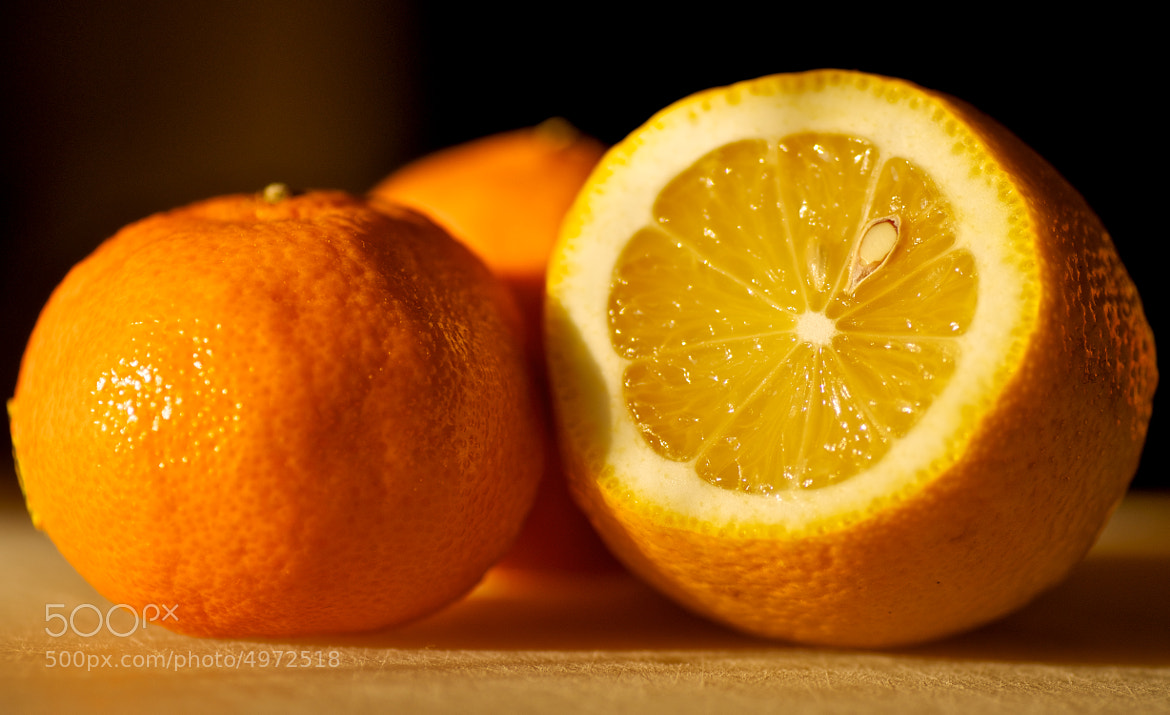 Photograph Lemons and Oranges by Theodore Kim on 500px