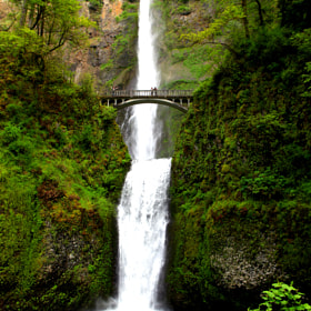 Multnomah by Kirsten Alana (kirstenalana)) on 500px.com