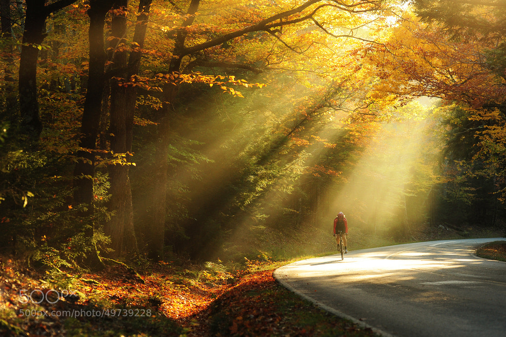 Photograph Riding in the light by Victor Liu on 500px