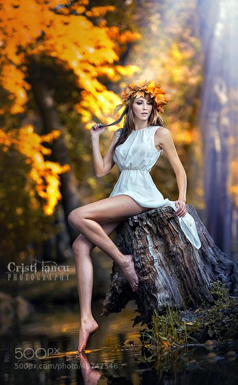 Photograph fairy tales by iancu cristi on 500px