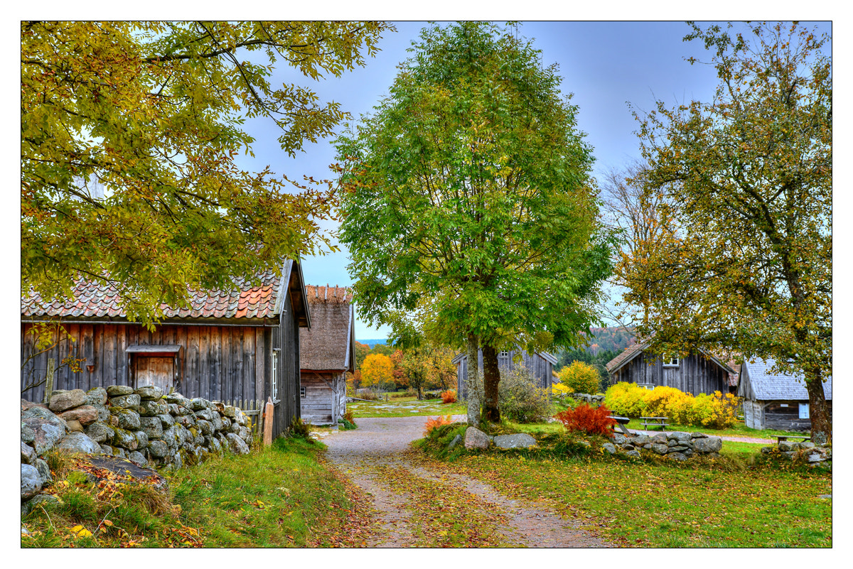Photograph Autumn in Äskhultsby... by Almqvist Photo on 500px